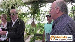 Damiana, passiflora, té canario…Plantas que curan: Josep Pamiés y Txumari Alfaro, Parte3