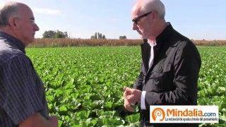 Col china y celidonia…Plantas que curan: Josep Pamiés y Txumari Alfaro, Parte6