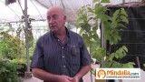 Planta de la vida, cardamomo…Plantas que curan: Josep Pamiés y Txumari Alfaro, Parte5
