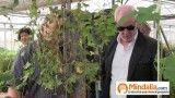 Marihuana, cloruro de magnesio…Plantas que curan: Josep Pamiés y Txumari Alfaro, Parte7