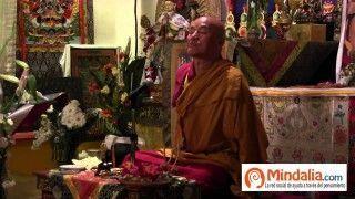 """Curso """"La vida y la muerte: cómo vivir y morir dignamente"""" por Thubten Wangchen PARTE 7 de 8"""