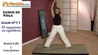 el-organismo-en-equilibrio-por-ramiro-calle-clase-de-yoga-11