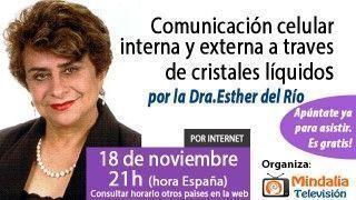 18/11/15 Comunicación celular interna y externa a traves de cristales líquidos por la Dra. Esther del Río