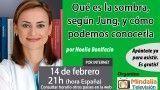 14/02/17 Qué es la sombra, según Jung, y cómo podemos conocerla por Noelia Bonifacio
