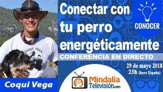 29/05/18 Conectar con tu perro energéticamente por Coqui Vega