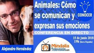 15/06/18 Animales: Cómo se comunican y expresan sus emociones por Alejandro Hernández
